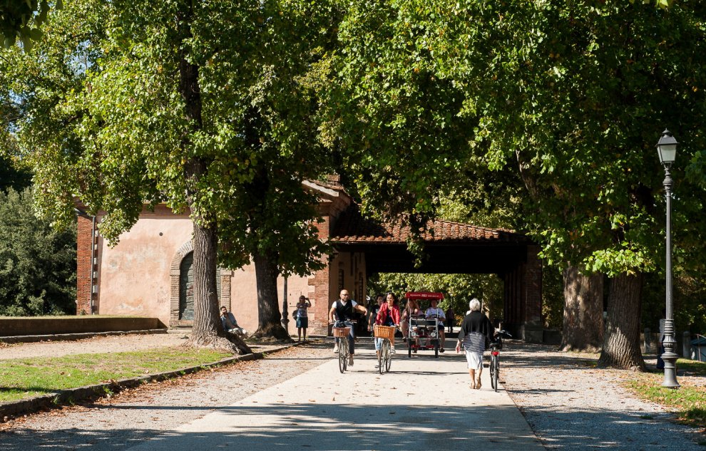 Private Tours - Lucca