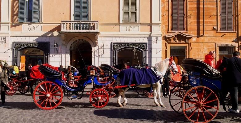 ROME GRAND TOUR HORSES
