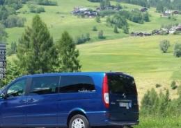 VENICE: MINIVAN + DRIVER SERVICES